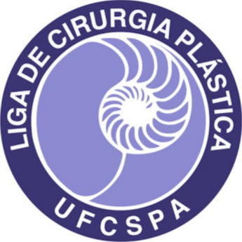 Licip Ufcspa about