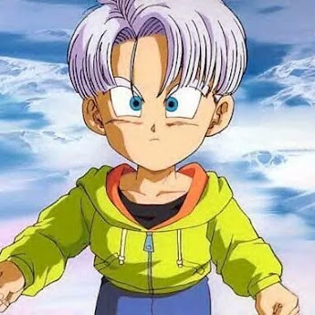 Trunks Briefs about